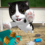 Cat Simulator – and friends v4.4.0 (Mod – Free shopping)