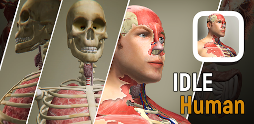 Idle Human v1.9.9 (Mod - Infinite Diamonds)