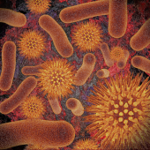 Infectious Disease Compendium icon
