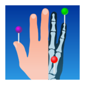 e-Anatomy icon